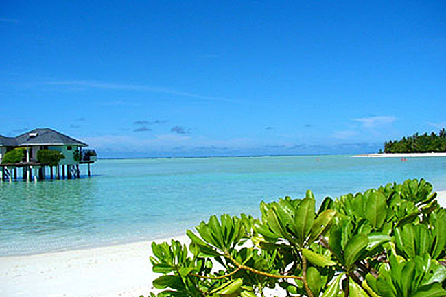 http://www.cruisemaldives.co.uk/images/resorts/sun/sun_island_6.jpg